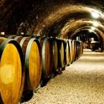 Old-wine-barrels-in-a-wine-cellar