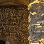 capela-dos-ossos-evora